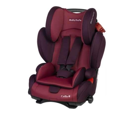 Baby Safe Collie