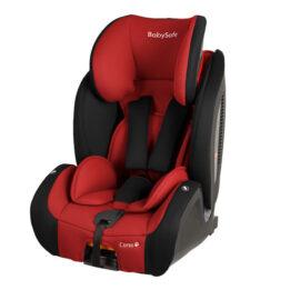 Baby Safe Corso